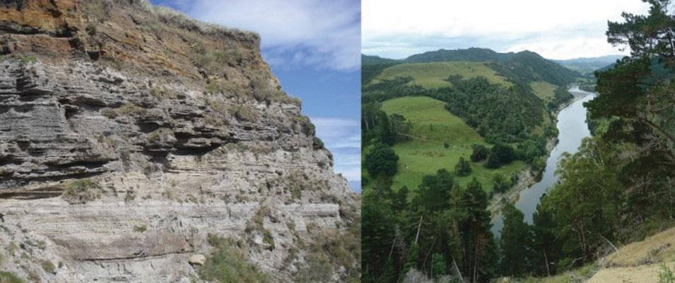 ICE FT 3 | Plio-Pleistocene Shelf to Miocene Deep-Water Deposits, Wanganui and Taranaki Basins, New Zealand
