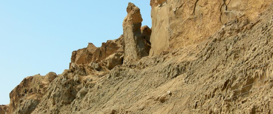 Field Trip to the Natih Formation Source Rocks (Albian-Cenomanian), Adam Foothills, Sultanate of Oman