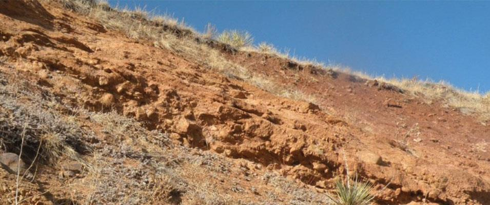 FT 6 | Geology of Exposures Along the Rocky Mountain Front Range, Morrison to Golden, Colorado, Including Stratigraphy, Environments of Deposition, Structure, Paleontology and Economic Geology