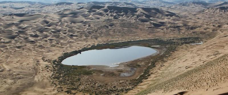 Carbonate Reservoirs of the Middle East and Their Challenges