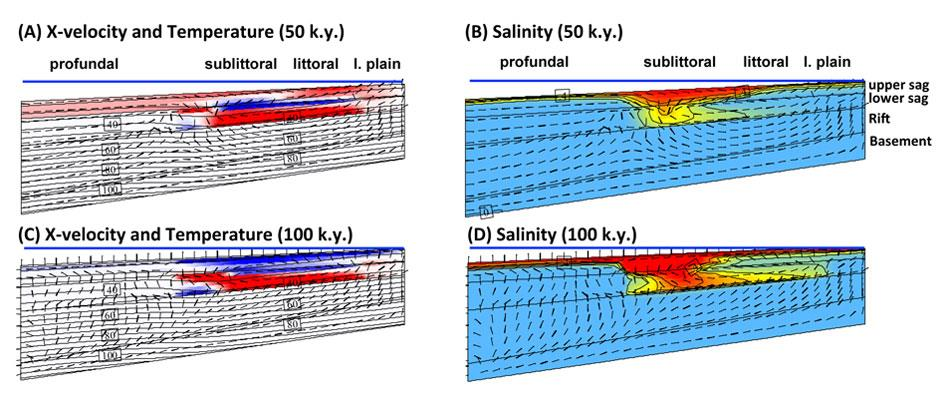 Geothermal convection in South Atlantic subsalt lacustrine carbonates: Developing diagenesis and reservoir quality predictive concepts with reactive transport models