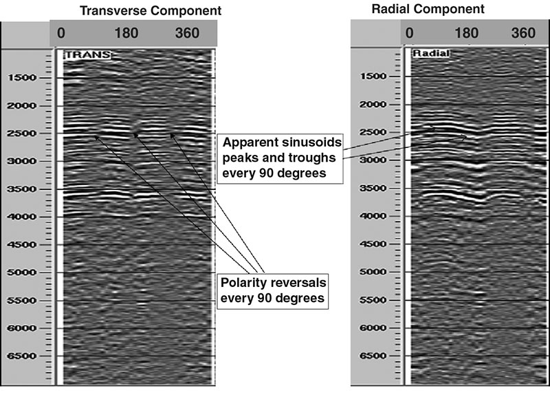 Figure 2 – Azimuth-sector gathers displaying characteristic signatures for radial and transverse components.