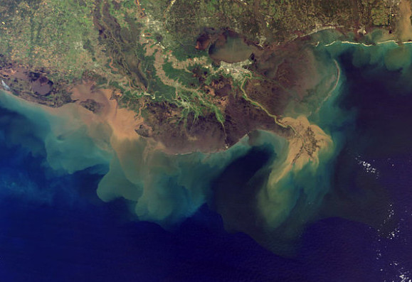 What Makes the Mississippi Delta Sink?