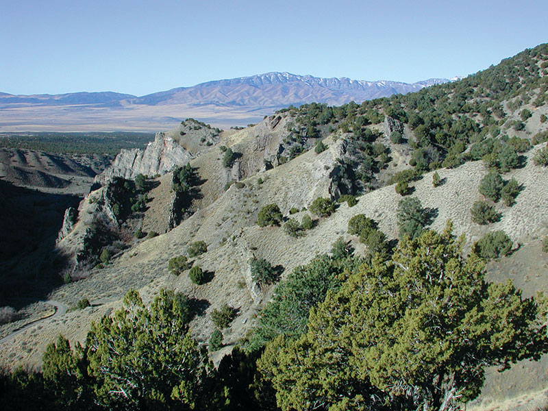 The Mississippian Manning Canyon Shale, Soldier Canyon, Oquirrh Mountain, northern Utah. Photo courtesy of Tom Chidsey.