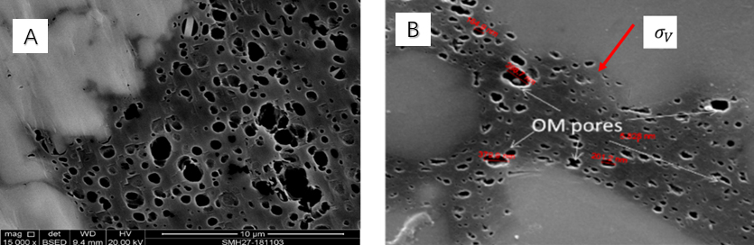 Fig 8 (A) Low stress effect for organic pore shape (Longmaxi Formation, Ⅰ-Ⅱ1 type, well YC2, 460m,TOC=2.4%,Ro=2.6%) (B) High stress effect for deformed organic pores (Xingwen section, Longmaxi Formation, Ⅰ type, TOC=3.81%, RO=3.05%)