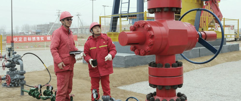 Shale Oil and Gas Exploration and Development - Prospects