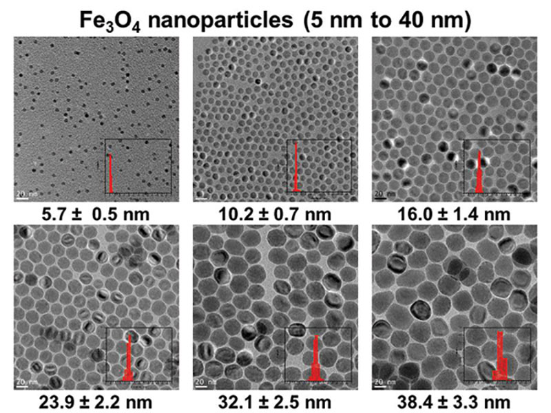 These transmission electron microscope (TEM) micrographs illustrate the Colvin (Rice University) Group's ability to synthesize magnetite (Fe3O4), controlling nanocrystal grain sizes and size distributions (histograms).