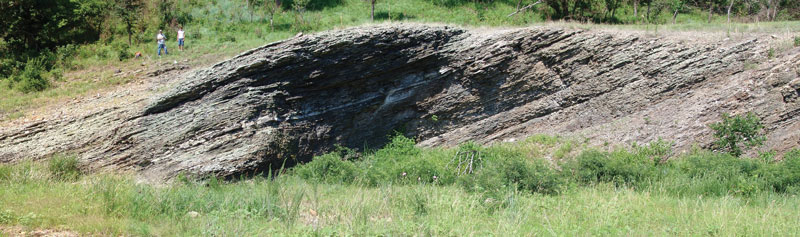 A portion of the informal upper member of the Woodford Shale (Upper Mississippian-Lower Devonian) in the Arbuckle Mountains, Oklahoma. The exposure – 230 feet in composite vertical thickness – represents a continuous, complete section. Photo couresy of Stan Paxton.