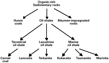 Figure 1. Classification of organic-rich rocks (from Hutton, 1987).