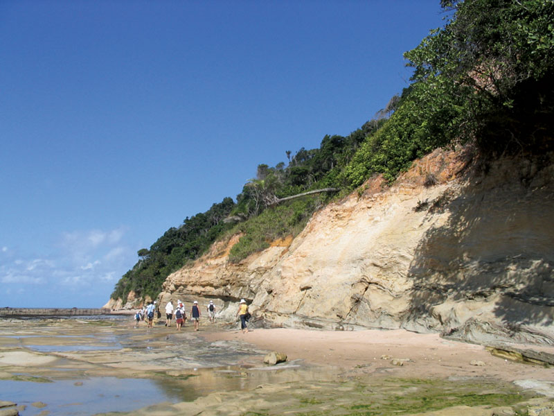Unlocking offshore secrets: Brazil's Sergipe-Alagoas Basin outcrops offer the sedimentary records of Paleozoic, pre-rift Jurassic, Lower Cretaceous rift rocks and younger drift successions – an excellent place to study the South Atlantic Margin.