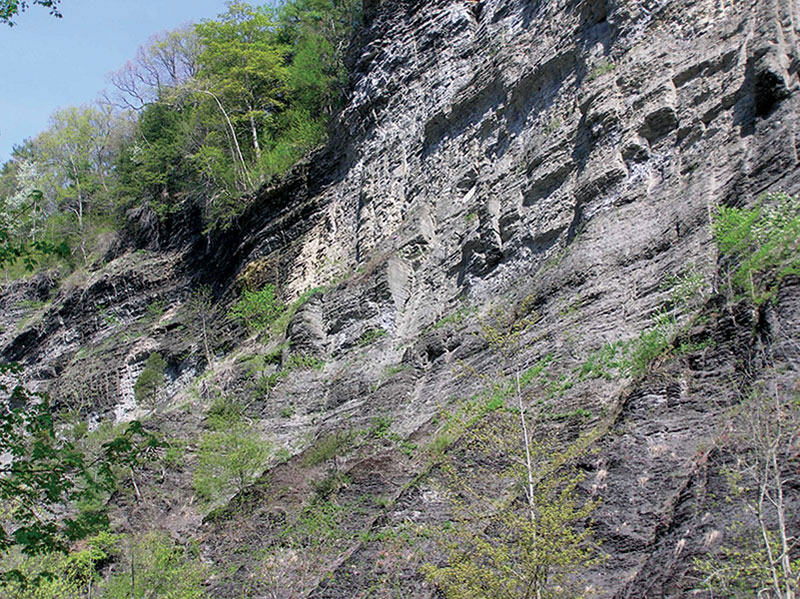 The Marcellus Shale: The play is all about the fractures in the rock and how you tap into them. Photo courtesy of Terry Engelder