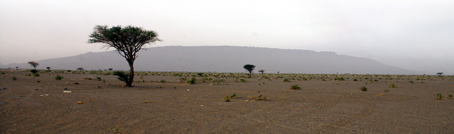 A view of Jebel Hafit from the Dhahira Plain. Photo by Alan Heward